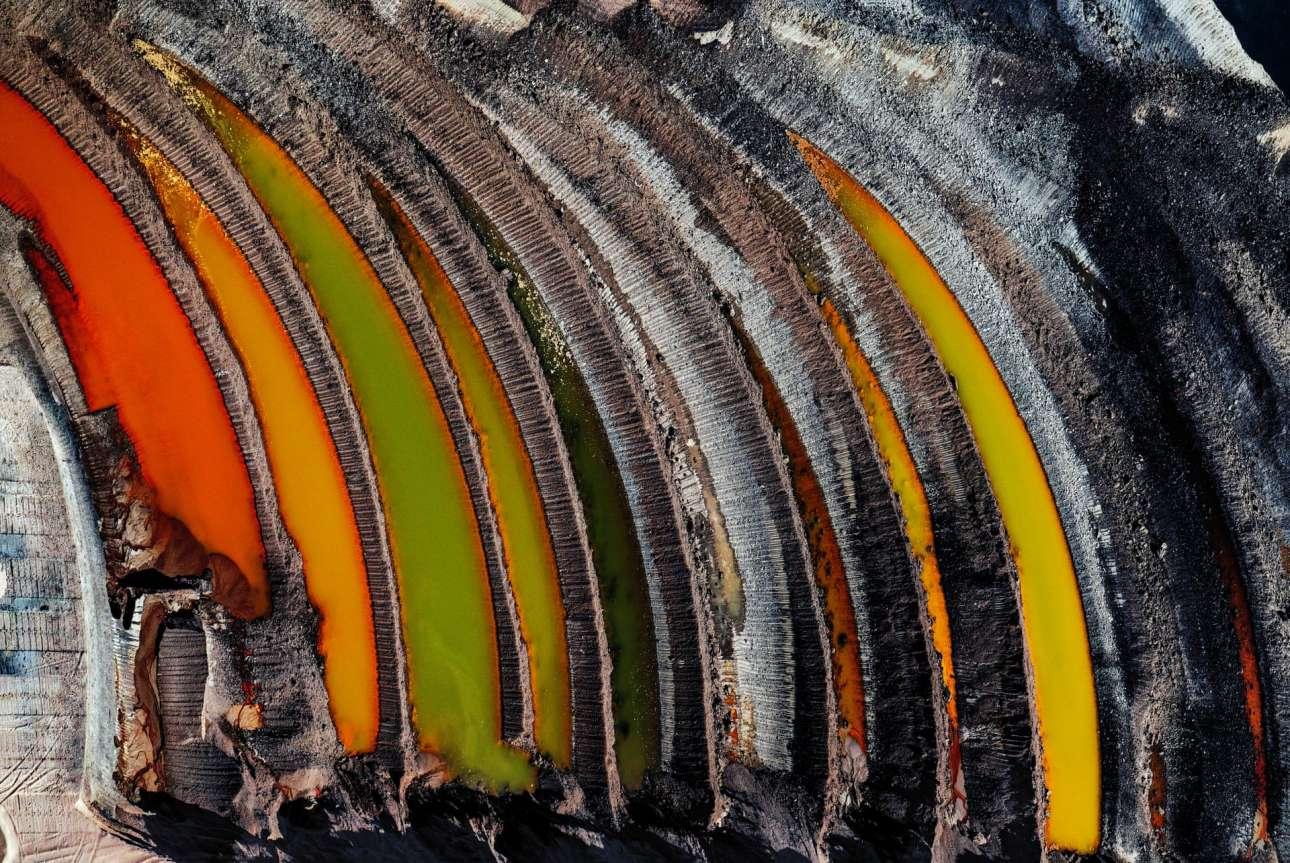 Βραβείο στην κατηγορία Κλιματική Δράση και Ενέργεια. «Τα απομεινάρια ενός δάσους». Το δάσος Χάμπαχ ήταν σχεδόν 12.000 ετών όταν το αγόρασε μια εταιρεία ηλεκτρικής ενέργειας με σκοπό να εκμεταλλευθεί τα κοιτάσματα άνθρακα που έκρυβε στη γη του. Το αρχαίο δάσος είχε κάποτε το μέγεθος του Μανχάταν, πλέον έχει απομείνει μόνο το 10%...