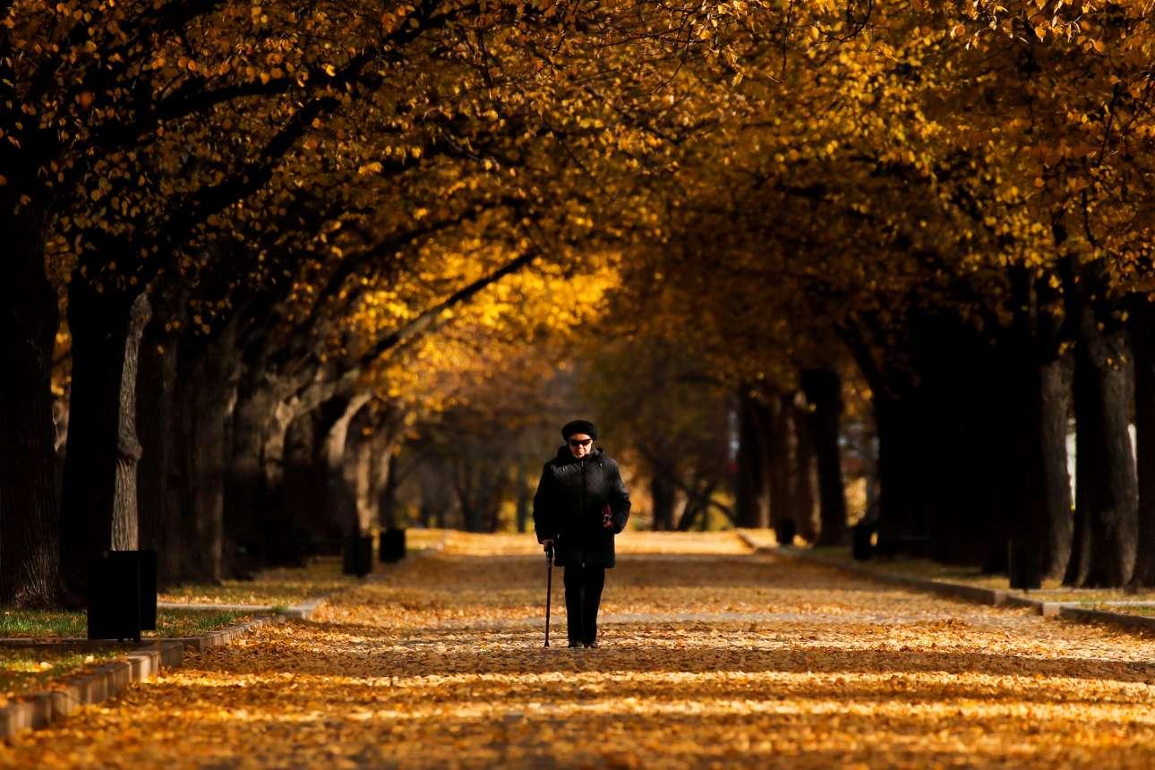 Λίγο πριν πέσουν τα χιόνια: τα υπέροχα χρώματα του μοσχοβίτικου Οκτωβρίου αποζημιώνουν κάθε διαβάτη για τον μοναχικό του περίπατο