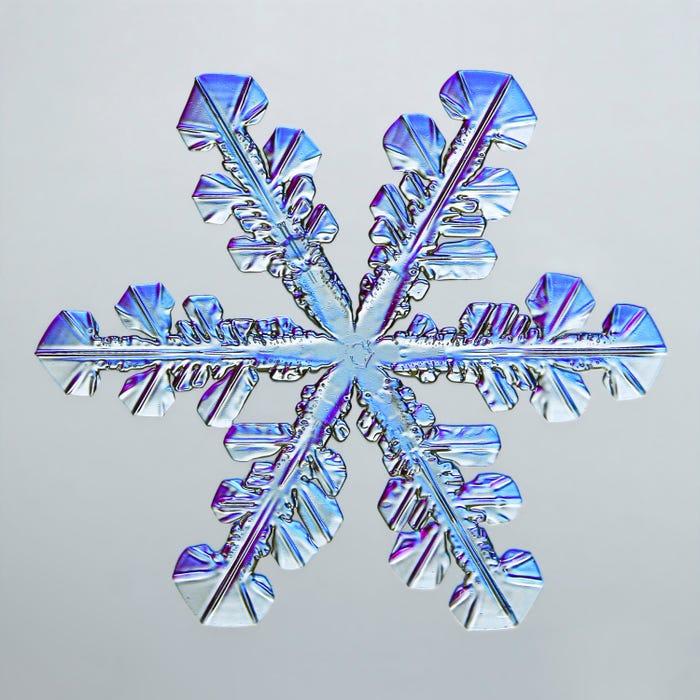 Οι νιφάδες χιονιού μοιάζουν ακόμα πιο παραμυθένιες κάτω από το μικροσκόπιο