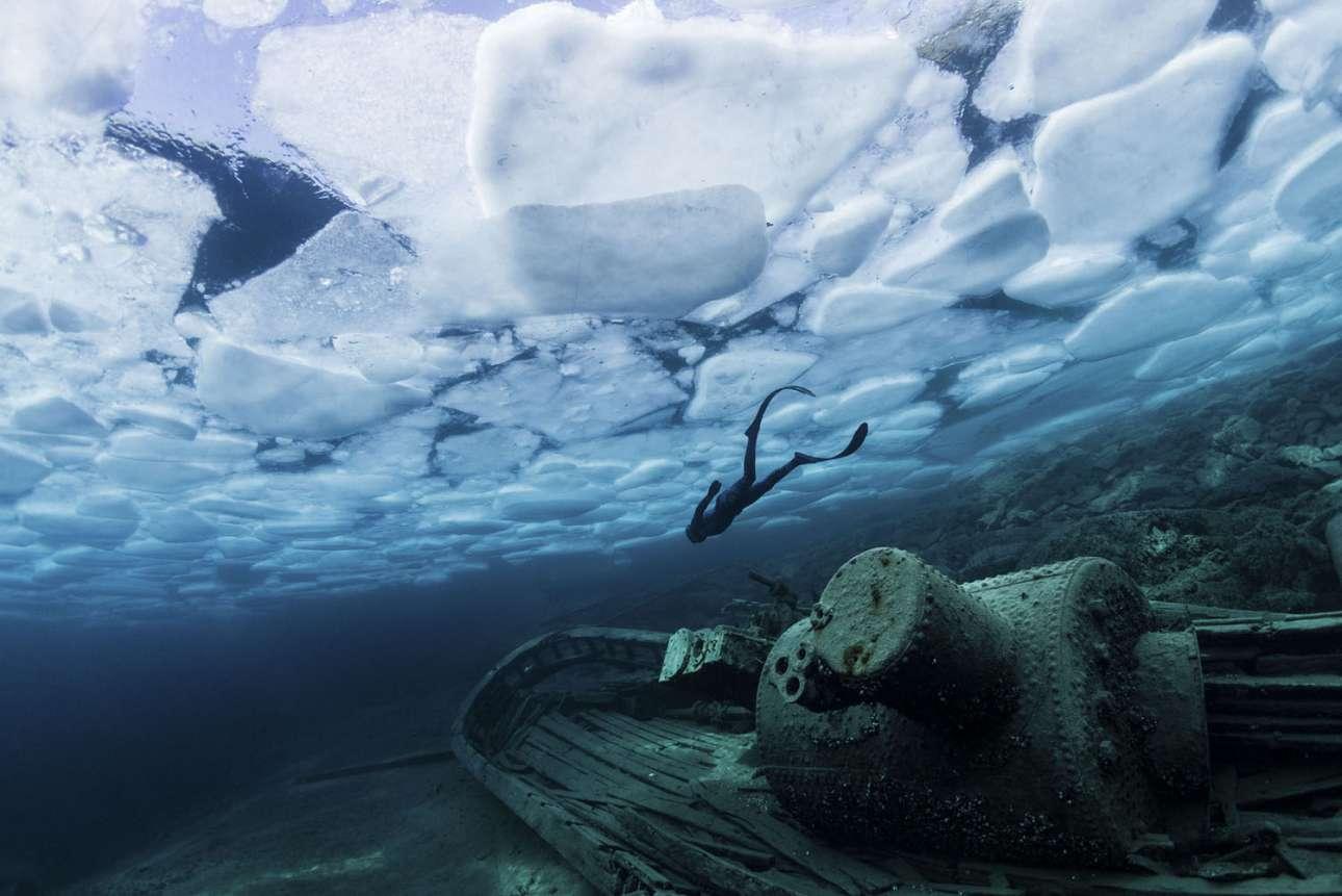Φιναλίστ στην κατηγορία Playground. Ο δύτης Αντριου Ρίζεμπολ κολυμπάει δίπλα σε ένα ναυάγιο στο Τόμπερμόρι του Καναδά