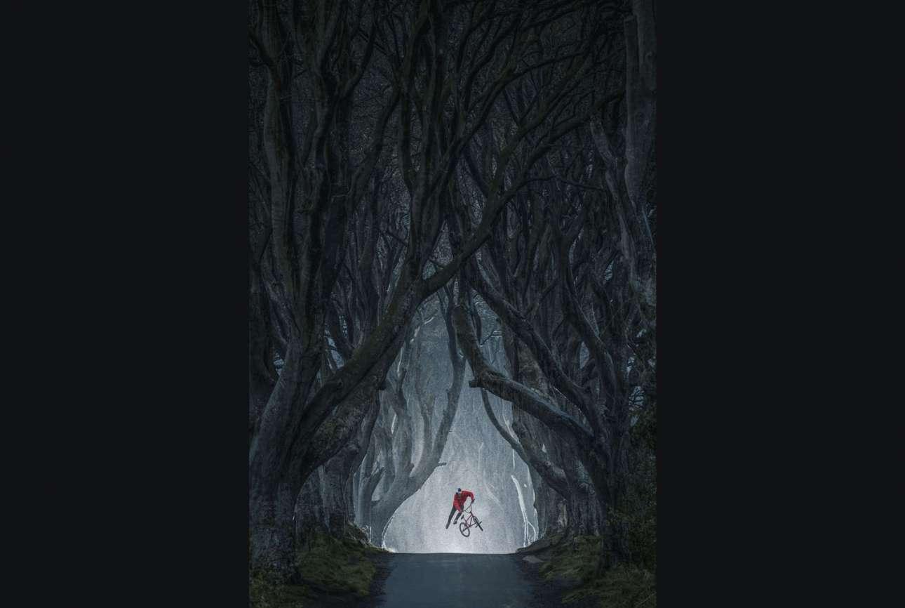 Νικητής στην κατηγορία Mastepiece by EyeEm. Ο ποδηλάτης Σενάντ Γκρόσιτς ίπταται μέσα στο επιβλητικό δάσος Νταρκ Χέτζις της Βόρειας Ιρλανδίας