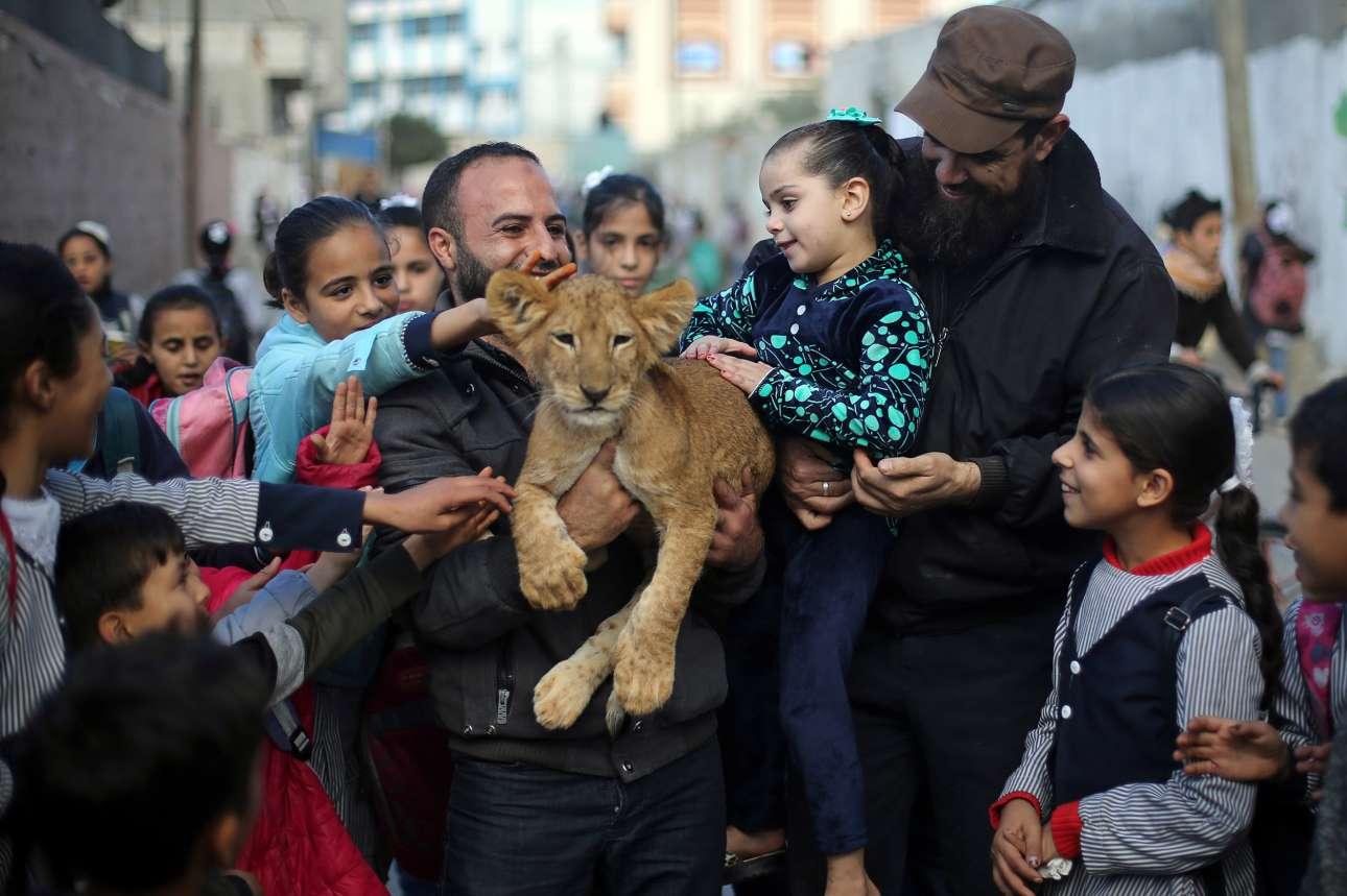 Τα παιδιά στο στρατόπεδο προσφύγων της Ράφα στη Λωρίδα της Γάζας παίζουν με ένα λιονταράκι που μοιάζει να απορεί πώς βρέθηκε σε αυτήν την περίεργη κατάσταση