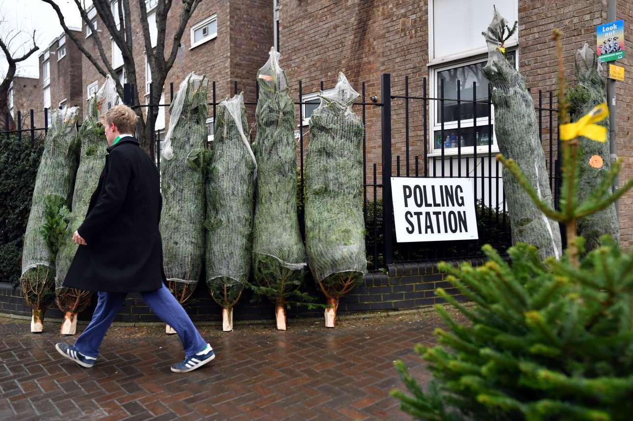 Ψήφος ανάμεσα σε χριστουγεννιάτικα δέντρα. Δεν είναι κάτι συνηθισμένο