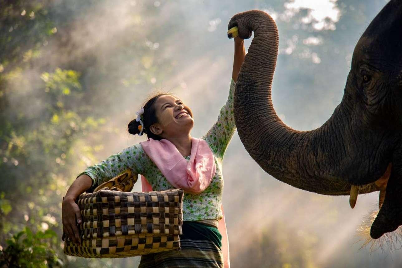 Η γυναίκα «πιάνει φιλίες» με έναν ελέφαντα στη Μιανμάρ