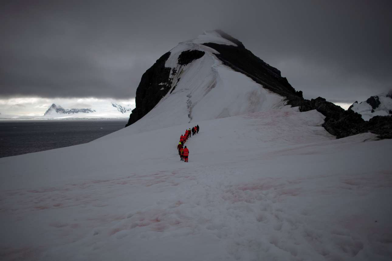 Οι ακτιβιστές της Greenpeace κάνουν περίπατο πάνω στο χιόνι την ημέρα του ρεπό τους, στο Λιμάνι Ορν της Ανταρκτικής