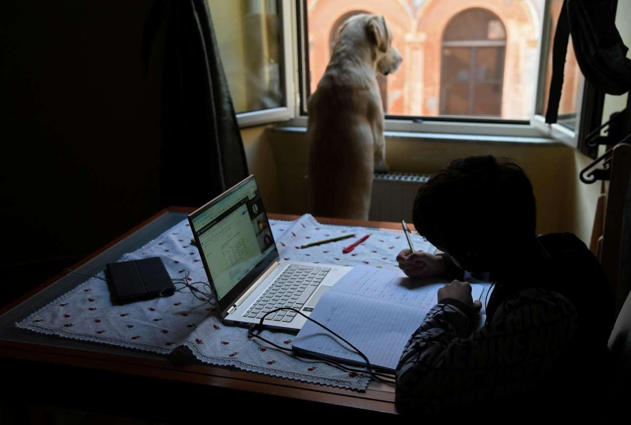 O σκύλος ανυπομονεί για μια βόλτα στη Ρώμη, αλλά το αγόρι πρέπει να κάνει τα μαθήματα του μέσω της εξ αποστάσεως διδασκαλίας