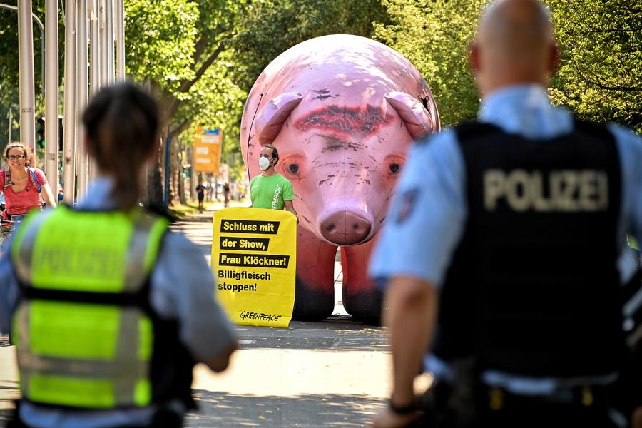 Σόου της Greenpeace στη Γερμανία, με αφορμή το γεγονός ότι εκατοντάδες εργαζόμενοι σε κρεατοβιομηχανική μονάδα διαγνώστηκαν προσβεβλημένοι από τον κορονοϊό. Το ζητούμενο, «ανθρώπινες συνθήκες εργασίας και καλή μεταχείριση των ζώων»