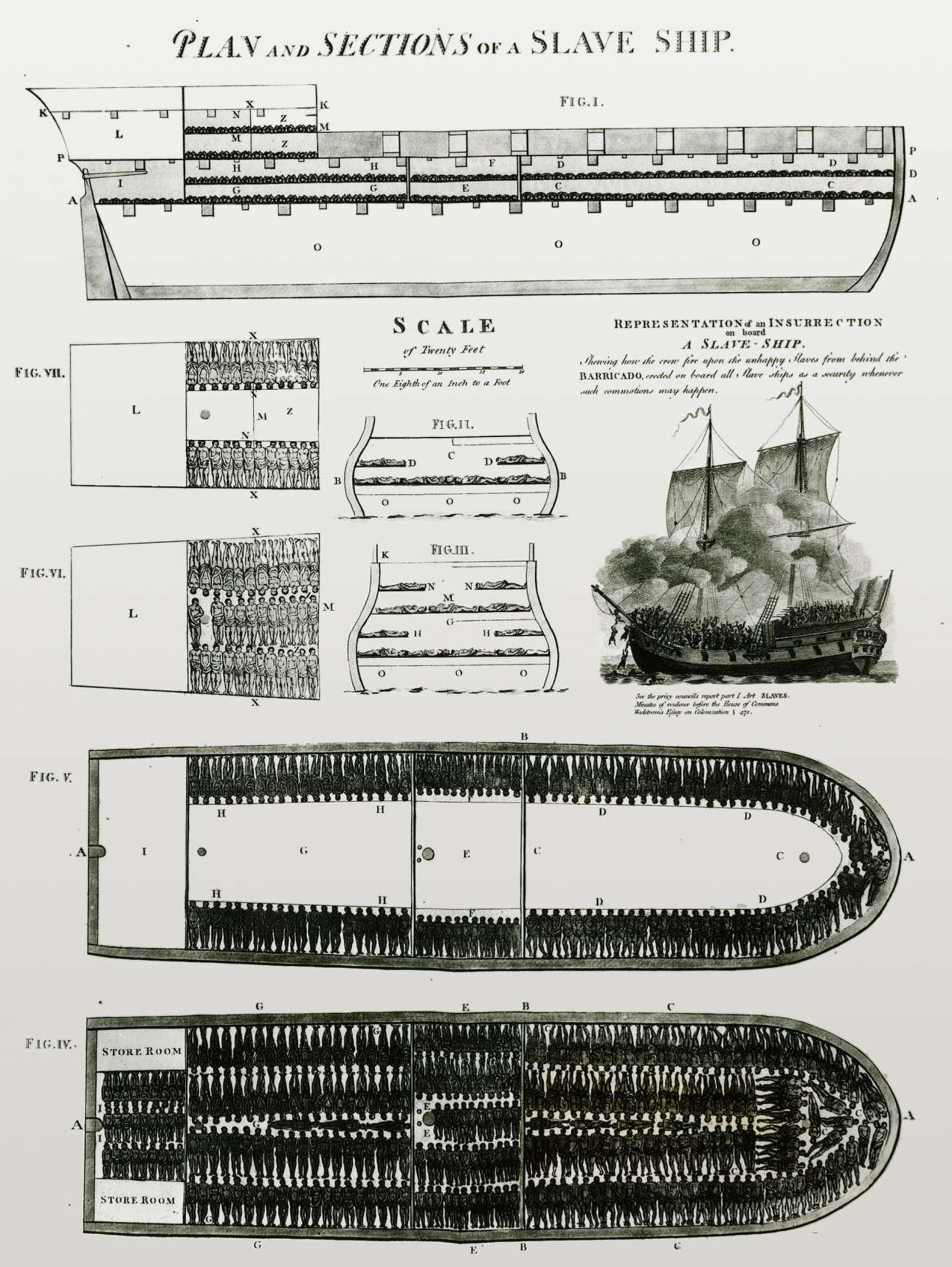 Σχεδιασμένη για να σοκάρει ήταν η αφίσα με το βρετανικό πλοίο «Μπρουκς» που έδειχνε πώς μετέφεραν σκλάβους από την Αφρική στη Βόρεια Αμερική. Είχε σχεδιαστεί από την Εταιρεία για την Επιβολή της Κατάργησης του Σκλαβεμπορίου και κατάφερε να ενημερώσει και να ευαισθητοποιήσει για αυτό το φρικτό εμπόριο, αλλά και να επηρεάσει την κοινή γνώμη