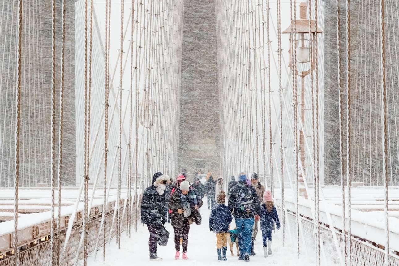 Νικητής του διαγωνισμού αναδείχθηκε ο Ρούντολφ Σουλγκάν με την παραπάνω φωτογραφία, από χιονοθύελλα στη Νέα Υόρκη