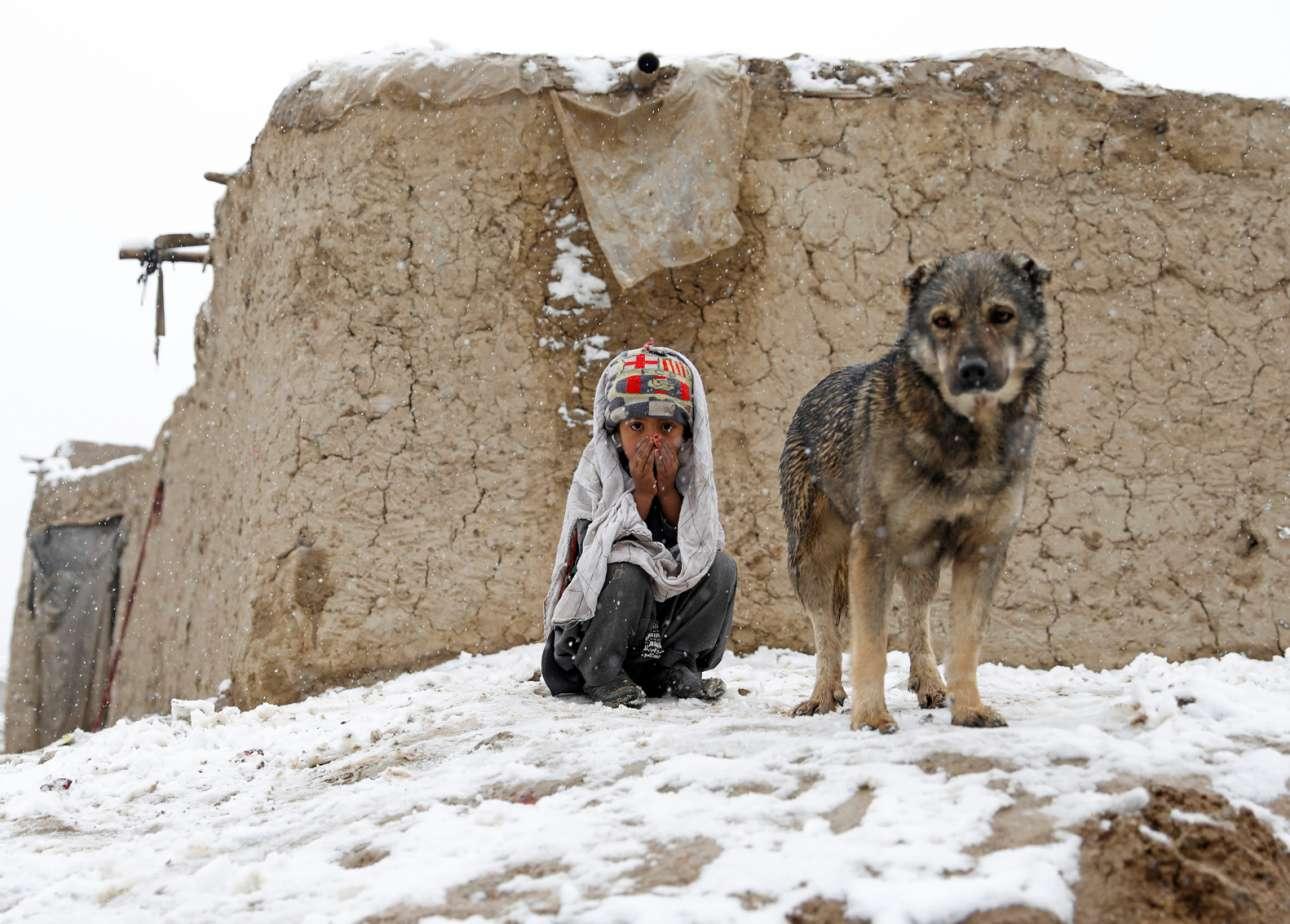 Και παράγκα και χιόνι και ψοφόκρυο και εσωτερική προσφυγιά. Στενόχωρα πράγματα και για το παιδί και για το σκυλί και για το Αφγανιστάν ολόκληρο επίσης
