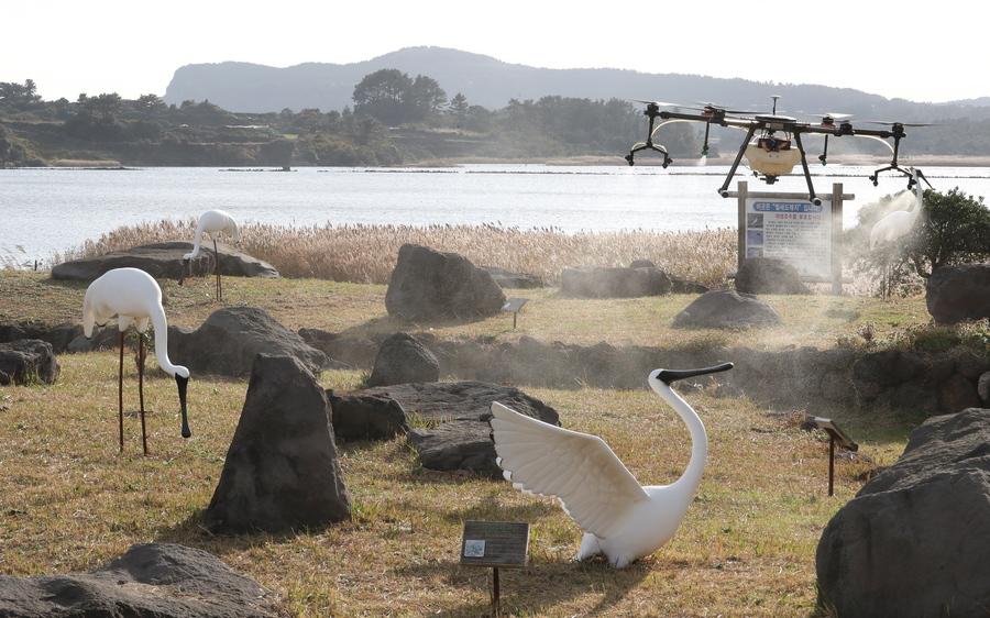 Νότια Κορέα είναι αυτή, και η τεχνολογία της θαυματουργή: ένα drone ψεκάζει με απολυμαντικές ουσίες τα αποδημητικά πουλιά, αφού μεταξύ τους εντοπίστηκαν κρούσματα της γρίπης των πτηνών