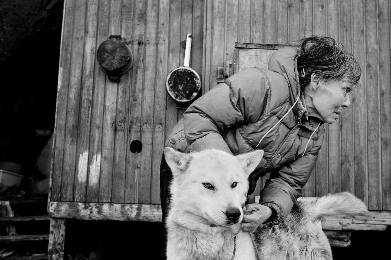 Σύμφωνα με μία γυναίκα που έχει ζήσει τις παλιές και νέες εποχές: «δεν θα υπήρχαν Ινουίτ χωρίς το σκυλί της Γροιλανδίας. Μας έχει κρατήσει ζωντανούς για 4.000 χρόνια. Τίποτα όμως κάτω από τον ήλιο δεν διαρκεί για πάντα. Και τώρα η σημασία αυτού του σκύλου φθίνει. Εχουν κυριαρχήσει τα snowmobiles και ως αποτέλεσμα τα σκυλιά μειώνονται σε αριθμό, όπως και οι κυνηγοί»