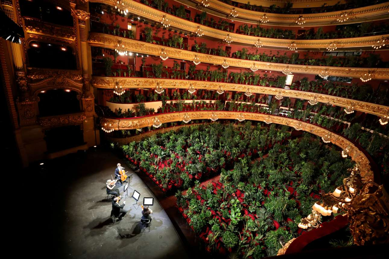 H πρώτη συναυλία της όπερας Liceu της Βαρκελώνης ήταν διαφορετική από τις άλλες. Μετά την άρση των περιοριστικών μέτρων οι... θεατές δεν είναι άνθρωποι, αλλά φυτά. Για την ακρίβεια 2.292 φυτά. Σύμφωνα με τον καλλιτεχνικό διευθυντή της όπερας Liceu, Βικτόρ Γκαρσία ντε Γκομάρ, το «Κονσέρτο για το Βιοκένιο», έχει σκοπό να μας βοηθήσει να αναλογιστούμε την κατάσταση της ανθρωπότητας και πώς κατά τη διάρκεια της καραντίνας, αναγκαστήκαμε να γίνουμε ένα «κοινό στερημένο από τη δυνατότητα να είμαστε κοινό».