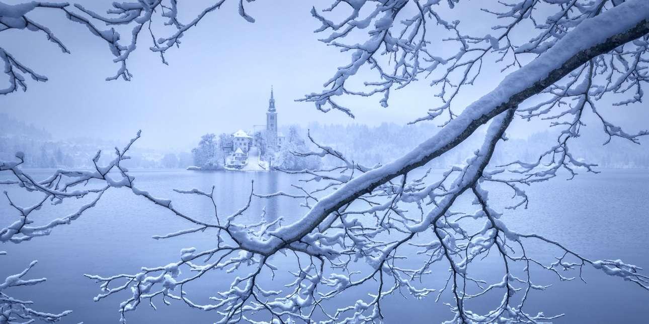 Τα πάντα μοιάζουν παγωμένα σε μια λίμνη της Σλοβενίας σε αυτή τη φωτογραφία με τίτλο «Frozen» που ξεχώρισε στον διαγωνισμό
