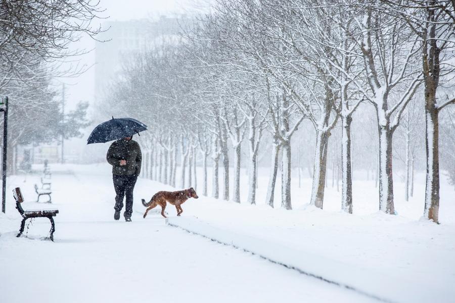 Και στη Χώρα των Βάσκων χιόνισε πολύ. Ετσι ακόμη και ο αναγκαστικός περίπατος με το κατοικίδιο έγινε κάπως ρομαντικός
