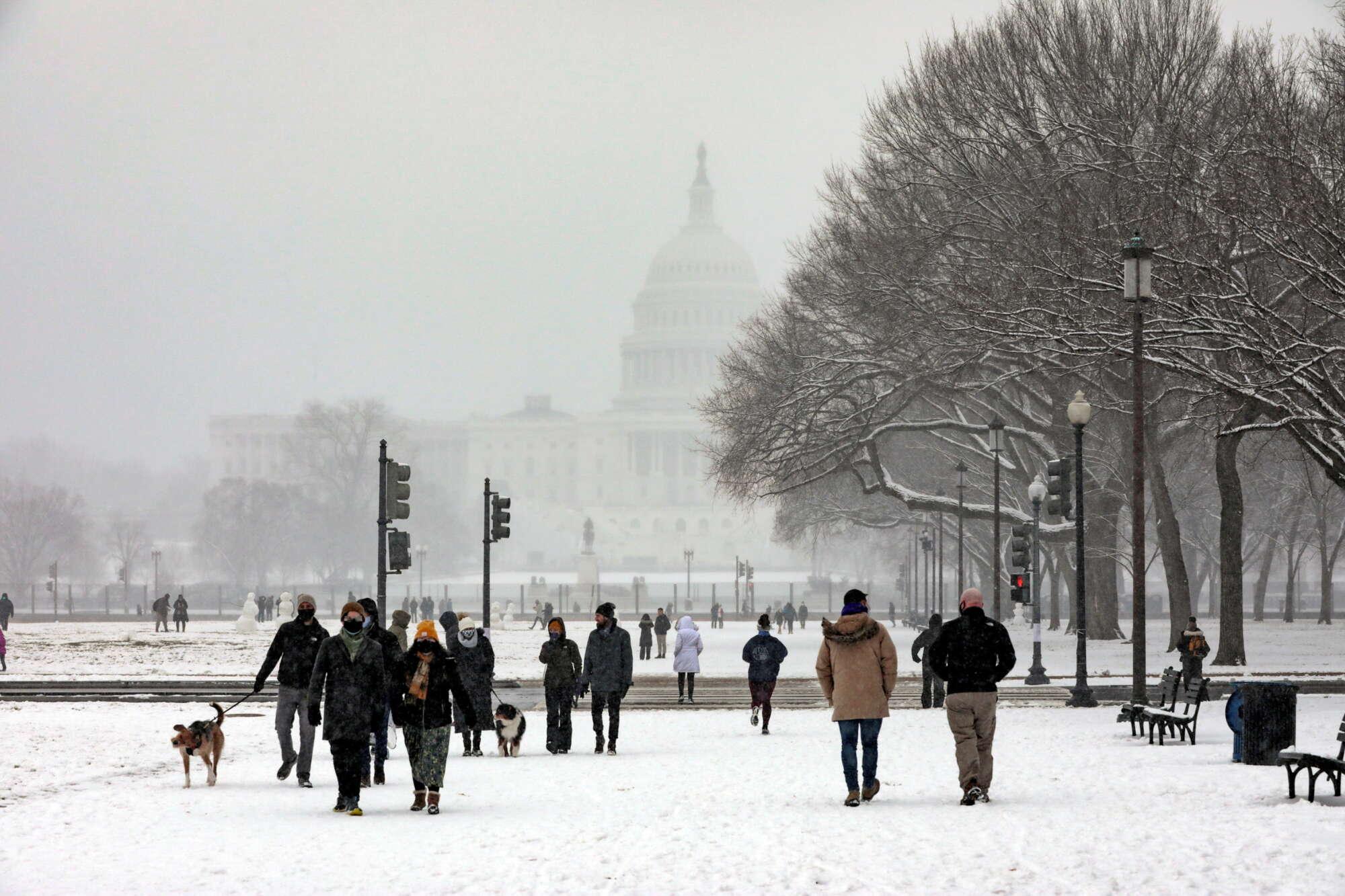 Οι κάτοικοι της Ουάσιγκτον απολαμβάνουν τον περίπατο στο National Mall, κοντά στο Καπιτώλιο