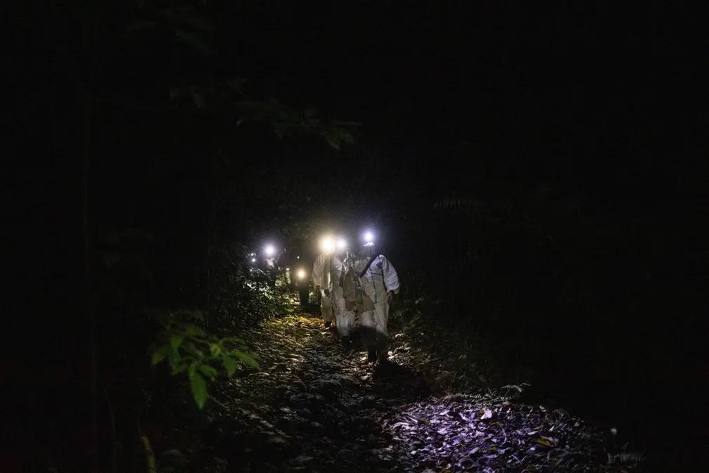 Μέλη της ερευνητικής ομάδας κρατώντας σάκους μέσα στους οποίους υπάρχουν αιχμαλωτισμένες νυχτερίδες επιστρέφουν από το δάσος του όρους Makiling. «Οσο περισσότερο ερχόμαστε σε στενή επαφή με την άγρια ζωή εκθέτουμε τους εαυτούς μας σε κινδύνους και ασθένειες. Αν δεν μπορούμε να σταματήσουμε αυτές τις επαφές πρέπει να βρούμε τρόπους να προσπαθήσουμε τουλάχιστον να περιορίσουμε τις επιπτώσεις πιθανών επιδημιών» υπογραμμίζουν οι επιστήμονες