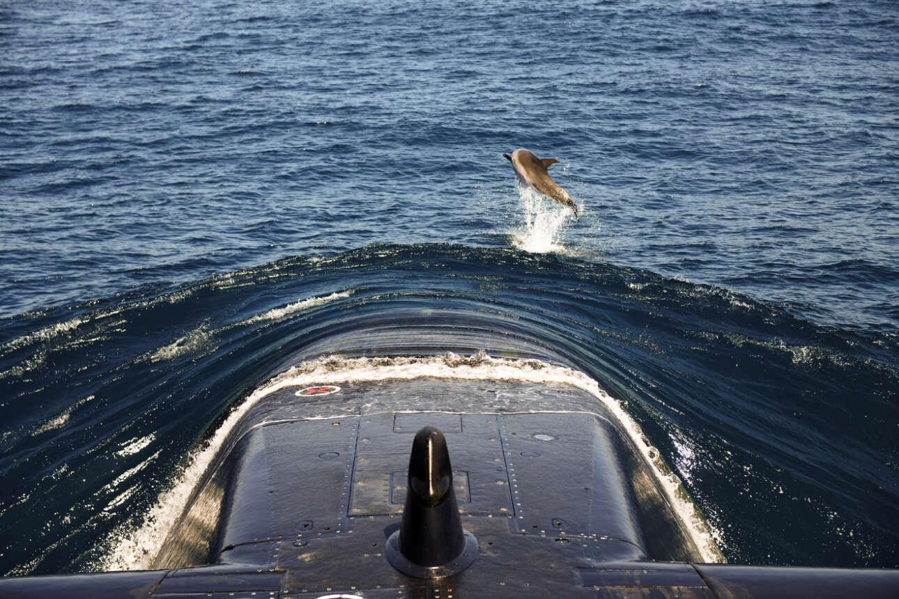 Δελφίνι παίζει μπροστά από την πλώρη ενός ισραηλινού υποβρυχίου στα ανοιχτά της Χάιφα