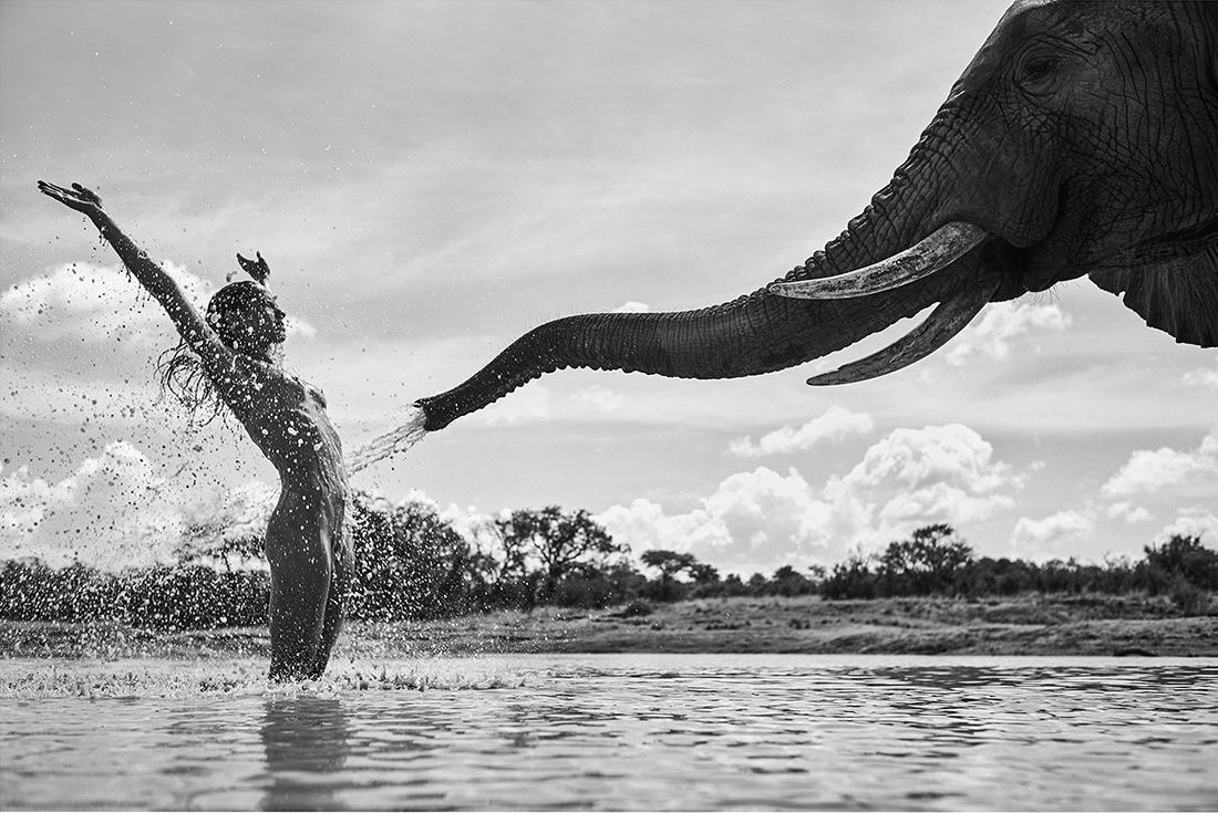 «Africa», η σειρά τιμήθηκε με το μεγάλο βραβείο του διαγωνισμού «Black & White Series of the Year 2021». Με την παρουσίαση γυμνών σωμάτων οι φωτογραφίες επιδιώκουν να στείλουν ένα μήνυμα για την απειλούμενη άγρια ζωή της Αφρικής