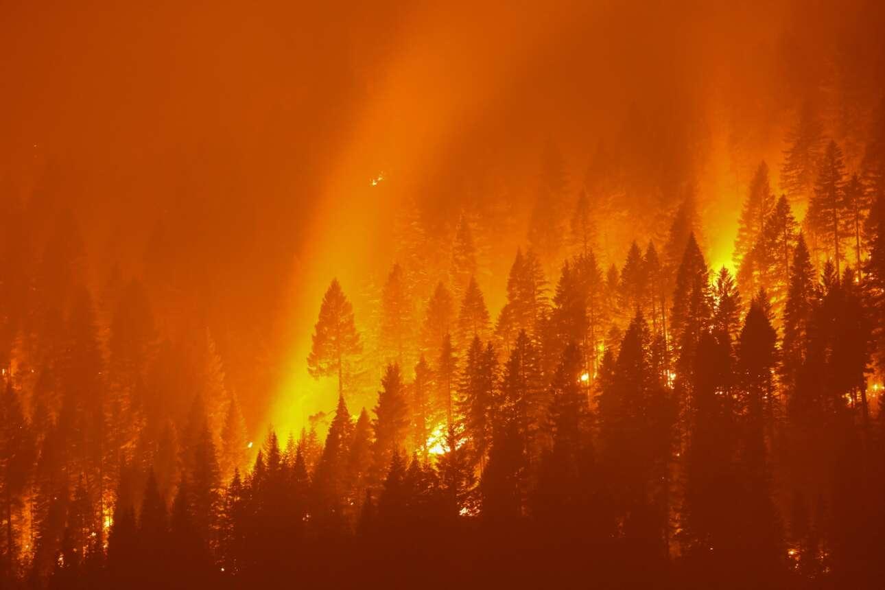 Την ίδια ημέρα που η πυρκαγιά έκαιγε την Αττική, στην Καλιφόρνια η Dixie Fire κατέκαυσε 200.000 στρέμματα δασικής έκτασης – τεράστια καταστροφή