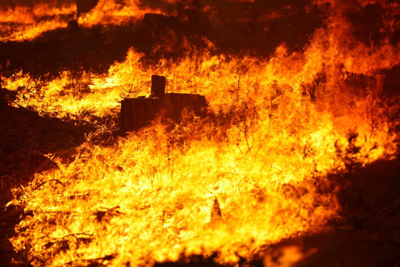 Μια θάλασσα φωτιάς στα μέτωπα