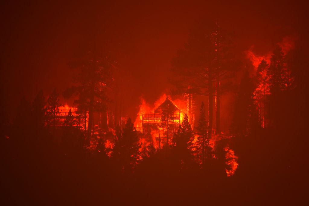 Εξοχικές κατοικίες ανάμεσα σε πανύψηλα δέντρα παραδίδονται στις φλόγες