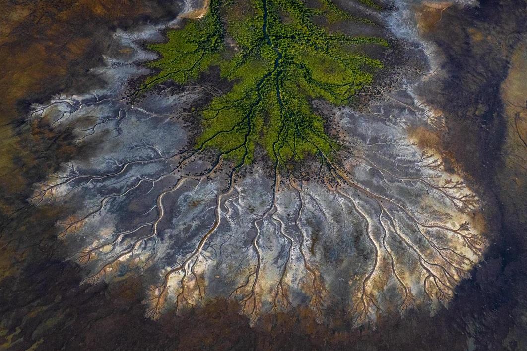 Τιμητική διάκριση στην κατηγορία Τοπίο απέσπασε η φωτογραφία του Αυστραλού Σκοτ Πορτέλι για τον Κόλπο του Carpentaria στο βόρειο Κουίνσλαντ όπου μυριάδες από εκβολές ποταμών, κολπίσκοι και ρυάκια δημιουργούν ένα από τα πιο περίπλοκα φυσικά τοπία
